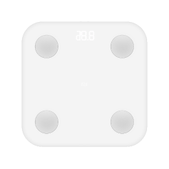<small>Mi Body Composition Scale</small>